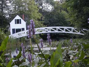 View of an arched foot-bridge over pond on Mount Desert Island, Maine